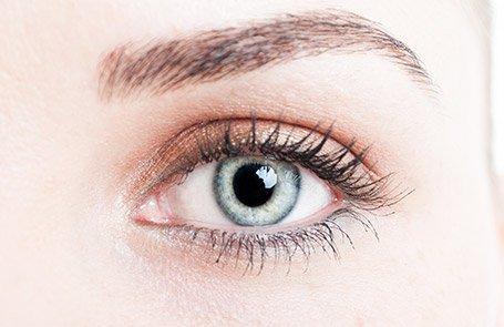 Our eyebrow and eyelash tinting samples