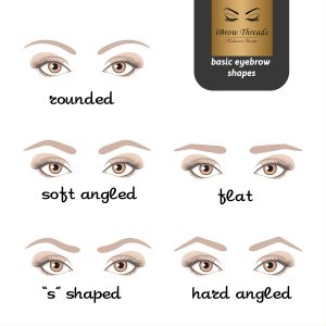 5 basic eyebrow shapes. Various types of eyebrows.